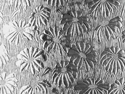 Patterned Glass